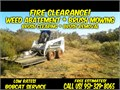 We offer affordable brush  weed abatement mowing fire hazard clearance We can handle all abateme