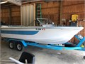 Tom Sawyer Funliner 18 Deep V IO 160 hp sleeper seats Garmin Fish Finder Heavy duty tandem trai