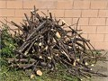 Free Firewood Some logs lots of kindling sized tree branches Near Woodley and Vanowen in Van Nuys