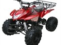 Price does not include TTNL CC and Debit Cards add 5 no checks  NEW 125cc KIDS QUAD MODEL 3125A