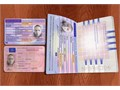 Have you been looking for a passport SSN drivers license ID Birth certificate diploma or any