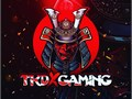 Want To Invest into a E-Sports Team Well its Possible Invest Today into An E-sport Team and Its