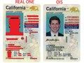 California Under 21New CA U21 id cardshttpsoldironsidesfakecomproductcalifornia-under-21ne
