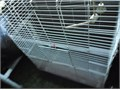 Per-own Animal cage 385 tall - 295 width- front to back 17 Great condition