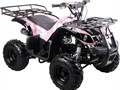 Price does not include TTNL CC and Debit Cards add 5 no checks NEW 125cc KIDS QUAD MODEL 3125R