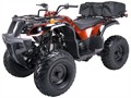 Price does not include TTNL CC and Debit Cards add 5 no checks  NEW 150cc QUAD MODEL 3150DX-2
