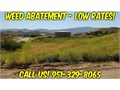 Weed Abatement Murrieta