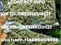 WE GOT TOP QUALITY FIRE STRAINS AVAILABLE WITH INSTANT DELIVERYWE OFFER  AND DOOR TO DOOR