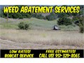 Got Weeds and Brush Lets Clear that Hazard Weeds and Brush Now We offer affordable weed abatement