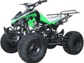 119999  TTNL NEW 125cc KIDS QUAD MODEL 3125C  4-STROKE REMOTE KILL SWITCH WITH SPEED GOVERNO