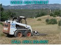 Your Local Weed Abatement Expert for over 30 years We specialize in fire clearance weed abatement