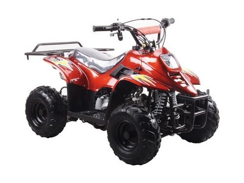 YOUTH ATVS-NEW 110CC