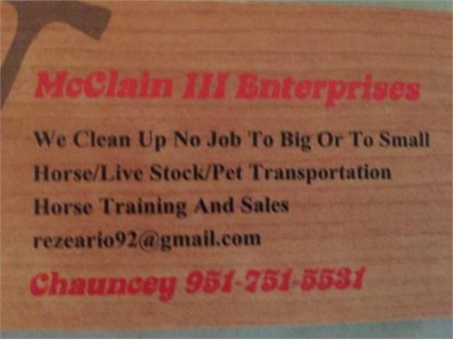 Horse/Livestock Transport
