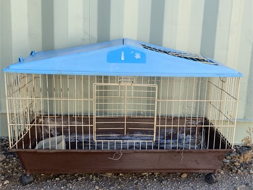 Rabbit& guinea pig cages
