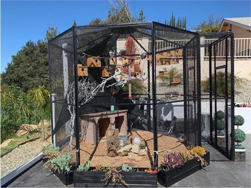 Custom Bird Aviary Cage