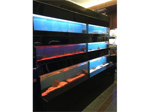 Commercial fish tank
