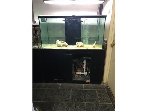 140 GL Fish Tank