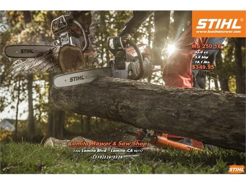 New MS250 Stihl