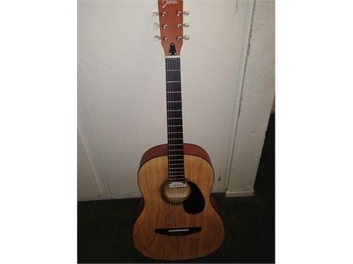 Johnson guitar