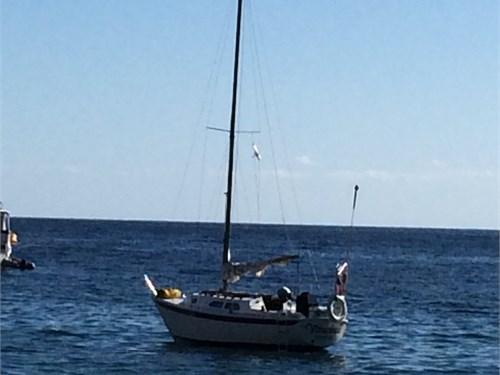 Ericson 27 Sail Boat