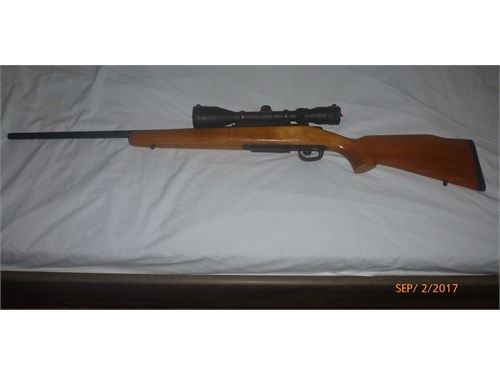 Remington 788 for sale