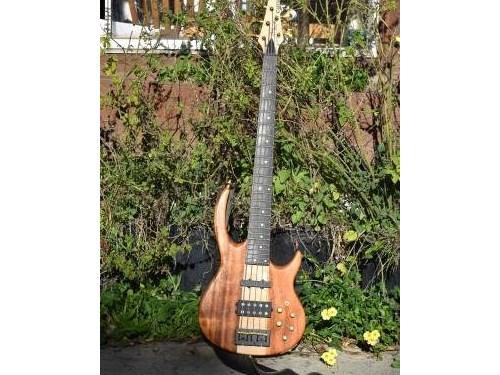 Bunny Brunel 5 bass