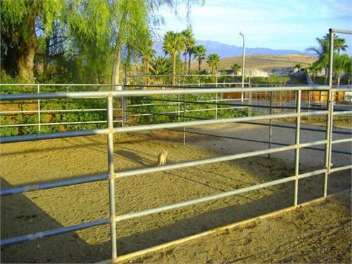 Horse Boarding-Riverside