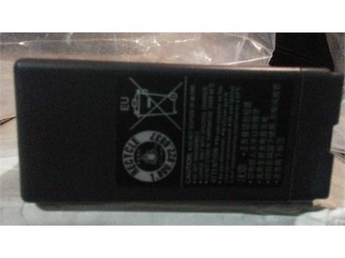 Panasonic VWVBG6 Battery