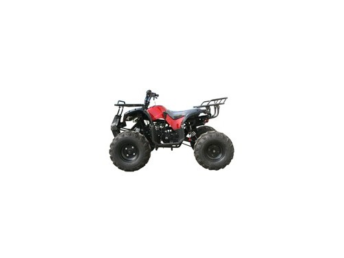 LARGE FRAME 125cc ATV