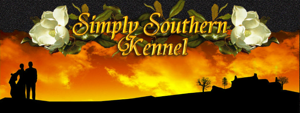 Simply southern Kennel is pleased to announce a variety of well socialized puppies for your home Co
