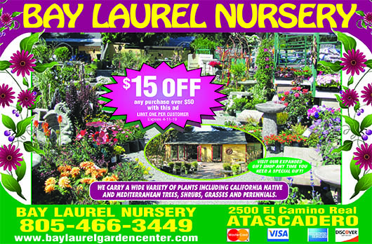 Bay Laurel Nursery 2500 El Camino Real Atascadero Come see our selection of over 350 varieties of