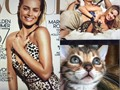 Bengal catkitten actors for photo shoots commercials feature films Worked with many Celebs like