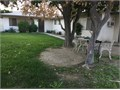 2 bedroom and 1 bath apt in duplex back unit in the heart of Palm Desert close to shops and colleg