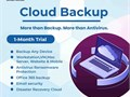Backup cloud is a great way to protect your critical information Cloud backup solutions consist of