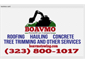 323 800-1017 boavmotowingcom CLEAN YARDS CONSTRUCCION TREE TRIMING AULING CONCRETE PLOMERY GENERA
