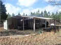 80- acres Loaded with Deer and Turkey different age pp CRP income 2BR1BA Camphouse Webster