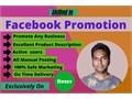 Hi I am Abdus Sattar I am a Professional Digital MarketerI can do a Facebook Promotion for your