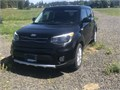 2017 Kia Soul PlusThis low mileage car has been well cared for and it show