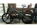 NOS Large 26 specialized stumpjumper expert test blue one per bike shop demo bike Custom made for