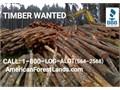 WA Logger Log Harvesting Log Buyer TIMBER WANTED FREE Bids  AmericanForestLandscom  Logging
