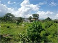 Breathtaking 14320 Square feet Lot overlooks the Ocean in picturesque St Mary Jamaica It is situ
