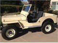 I have owned the jeep for 30 years Kept garaged Just finished it Lots of new parts tires spring