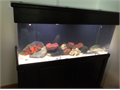 90 Gallon Acrylic Fish Aquarium-includes Canopy Stand Sea Clear System II built in filtration syst