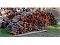Red Oak - SOLD OUT - BBQ only Euc 175 Pine 100 cord Seasoned Customer pick-up preferred Cas