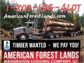 Timber WANTED Cedar Fir WE PAY YOU Logging Thinning trees Land clearing Log Hauling Excavating