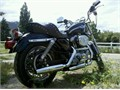 2003 Harley-Davidson Sportster XLH Anniversary Edition Ready to roll 32k miles Recently replaced
