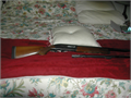 REMINGTON 1100 SEMI-AUTO 2 barrels Modified and improved one ribbed one ported New but pad I am