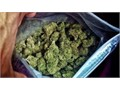 quality weed from jamaica keeps you wormed and gives you good inspiration when you are lonely conta