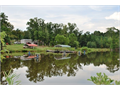 Edgefield The Perfect Small Farm 30 Acres 3 Acre Spring Fed Pond 2 Single Wide Mobile Homes 1 Fo