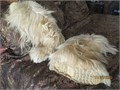 Shaggy boots womans size Euro 41-42US 10-11  Open Country brand blond goat fur  Made in Italy